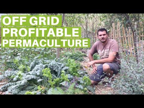 Off the Grid Zero Waste Profitable Permaculture Farm