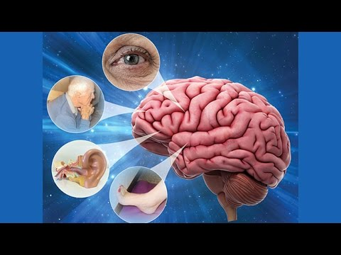 Dizziness and Vertigo - Research on Aging