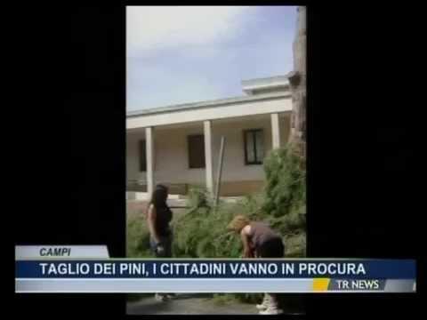 """Pinicidio Campi Salentina: """"La Procura fermi la strage!"""""""