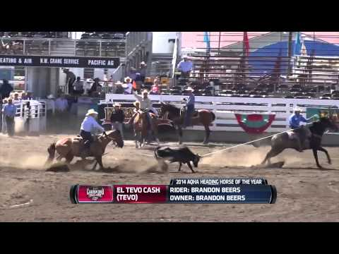 2014 AQHA-PRCA Horses of the Year