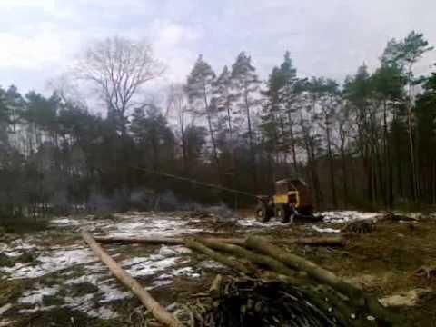praca w lesie, zrywka w lesie
