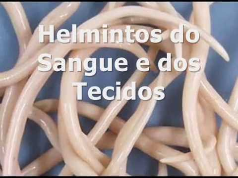 helmintos do sangue e dos tecidos