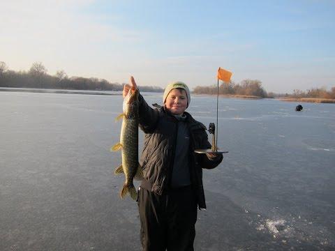 сургут рыбалка на жерлицу