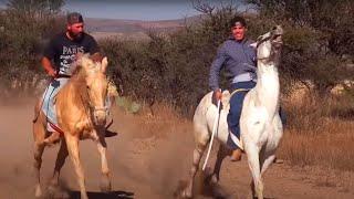 Carreras de caballos en Los Haro (Jerez, Zacatecas)