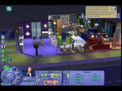Let's Play The Sims 2 Pets (PC) #49 Puppies & Pandas