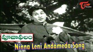 Ninna Leni Andamedo Song From Pooja Phalam Movie   ANR   Savitri   Jamuna - TELUGUONE