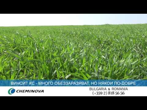 Cheminova  - Обеззаразителят  ВИНСИТ KC