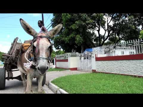 Sweet Jamaica - Mr. Vegas - Shaggy - Josey Wales [ 2011 Reggae Music ]