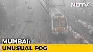 Thick Morning Fog Surprises Mumbai, Railway Services Affected - NDTV