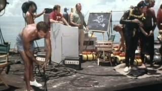 41 Flipper und das Stromkabel