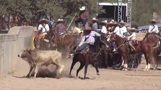Coleaderos en Toribio (Raúl Tapia Valádez) (Calera, Zacatecas)