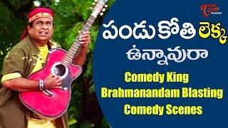 Comedy King Brahmi Best Comedy Scenes Back To Back | Telugu Comedy Scenes | NavvulaTV - NAVVULATV