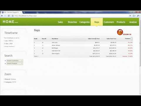 2 Minute Video Demo on DSS, Business Intelligence Software