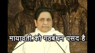 Mayawati hints at alliances in different states - ABPNEWSTV