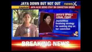 #JayaInJail: Jayalalithaa also seeks stay on conviction order - NEWSXLIVE