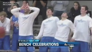 WEBCAST: Unusual Bench Celebrations - ABCNEWS