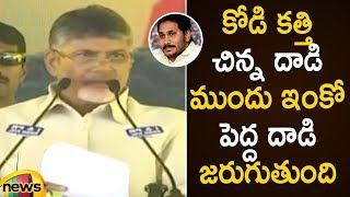 Chandrababu Naidu Slams Jagan Mohan Reddy Over Vizag Assault Drama | AP Political News | Mango News - MANGONEWS