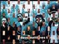 Dave Matthews Band #41
