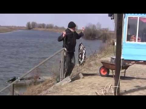 рыбалка в астрахани кировский район видео