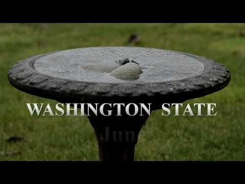Washington State Weather