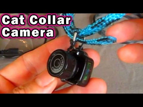 Cat Collar Camera $10.99 Y2000 mini cam Dog Pet Y3000 Unboxing & Review