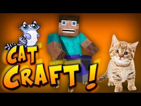 ŚMIESZNE KOTY W MINECRAFT ?! - Cat Craft
