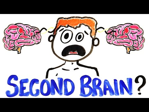 What If You Had A Second Brain?