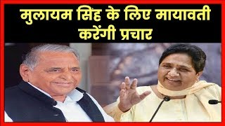Mayawati And Mulayam Singh Yadav To Share Stage To Woo Voters,Rivals On One Stage - ITVNEWSINDIA