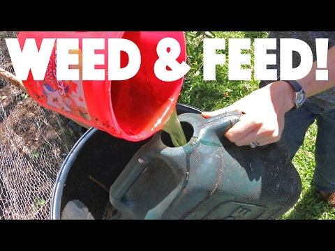 Combining Weeding and Fertilizing