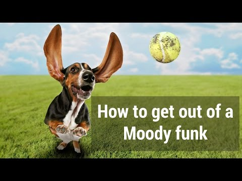 How to get out of a Moody funk
