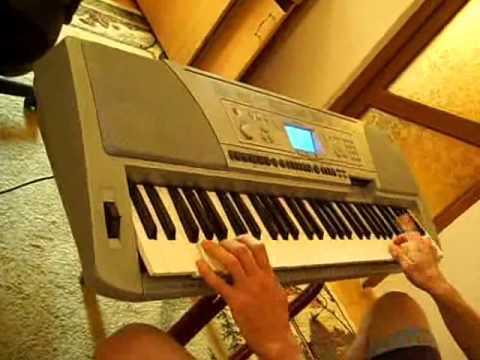 Muzica populara - Mandrulita din Banat (Yamaha Psr 450)