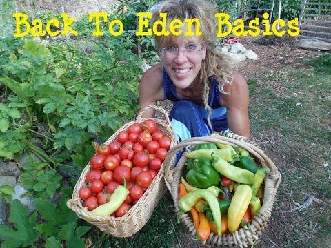 Back To Eden Gardening: Wood Chip Basics 101