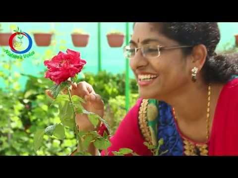 Terrace Gardening | Meet one of the most successful Kitchen Gardener | Sridevi