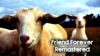 Royalty Free :Friend Forever Remastered