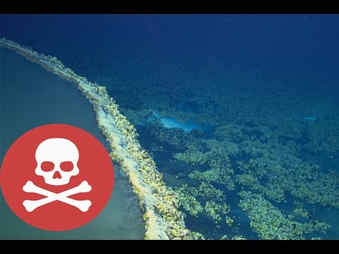 Scientists Discover UNDERWATER Lake That KILLS Everything it Touches!