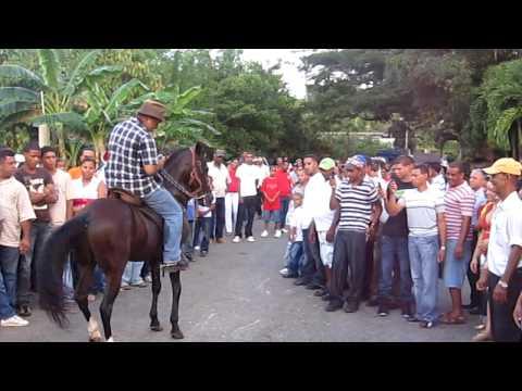 Marmolejos, Los Hidalgos, Caballo de paso fino
