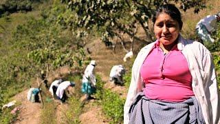 #drugtrap: Breaking free - Gilda, Bolivia | Life Links - DEUTSCHEWELLEENGLISH