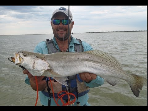Speckled Trout fishing with Croaker Tips Tricks and Advice, Trophy Trout Fishing