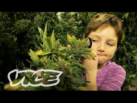 Stoned Kids 2013 documentary movie, default video feature image, click play to watch stream online