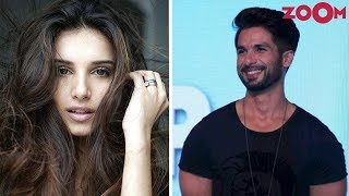'SOTY 2' Actress Tara Sutaria To Be Shahid Kapoor's Leading Lady In The Arjun Reddy Remake - ZOOMDEKHO