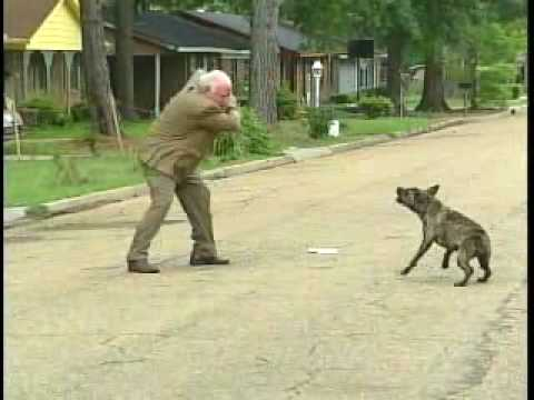 Bert Case Dog Attack WLBT Archive
