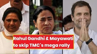 Rahul Gandhi,  Akhilesh Yadav & Mayawati to miss Mamata's rally, is anti-BJP parties weaken? - NEWSXLIVE