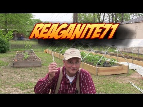 Garden Update & Modifications to the Raised Bed Greenhouses