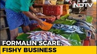 Formalin Scare Hits Fish Markets In Assam; Kerala, Northeast Cautious - NDTV