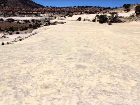 20 Mile Wash Dinosaur Track Site