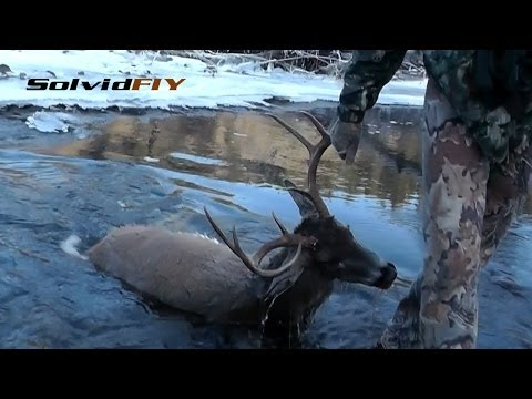 The Big Splash - Whitetail Deer Hunting by Solvid FIY