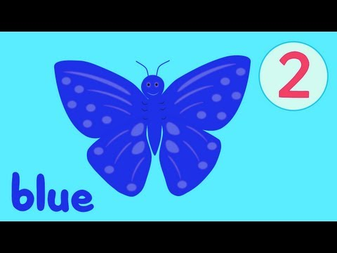Butterfly Colors Song 2