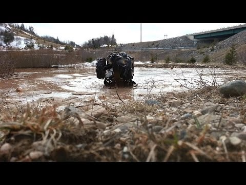 Renegade 1000 XXC - Water Wheelie Wednesday