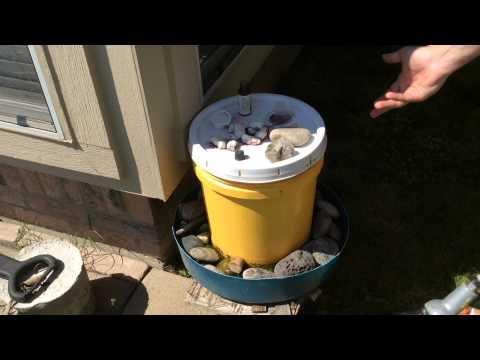 Beekeeping - Easy DIY watering hole