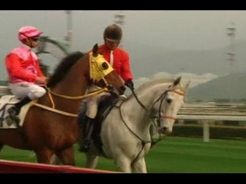 Pacuan Kuda Hong Kong Membawa Emas Di Tahun Kuda